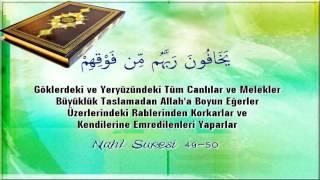 Kuranı Kerim Türkçe Meali Nahl Suresi 49-50
