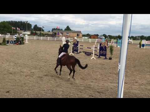Charlie Flanagan Vivantos 27-8-3016 pony championships 1:20