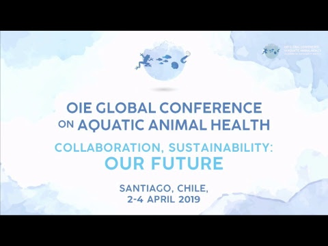 Day 2 - OIE GLOBAL CONFERENCE ON AQUATIC ANIMAL HEALTH
