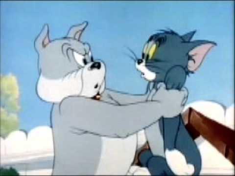 Grrr Meow!