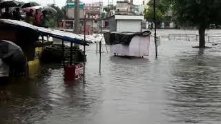 shajapur heavy rain
