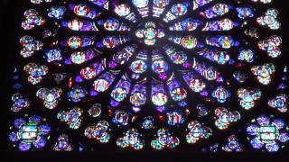 Inside Notre Dame Stained Glass Window and Organ