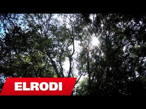 Dava Gjergji - N'Shkup Kem Le E N'Shkup Do T'vdesim (Official Video HD)