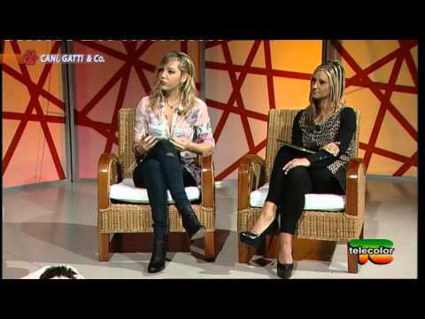 """Trasmissione """"Cani, Gatti & Co"""" - 21.11.2015 - Pastore dell'Asia Centrale"""