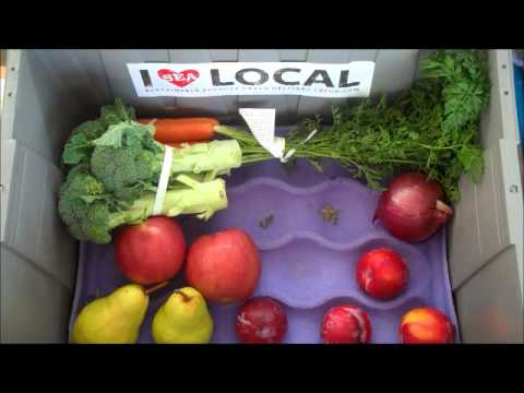 Seattle's Fresh Local Organic Produce Box for the week of Sept.30th