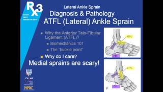 RX3 ECHO Lecture: Ankle Pain