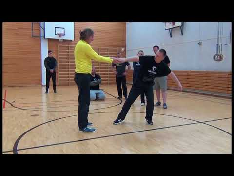 Systema Russian Martial art - style Solovyev Wave Levers ... Training Helsinki 2017 Workshop