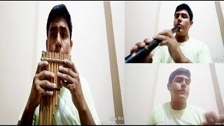 despacito luis fonsi quena y zampoña instrumental