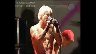 Red Hot Chili Peppers - Under the Bridge live at Big Day Out 2000