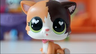 Gambar cover New LPS #28! [MYSTERY LPS FELINA MEOW!?]