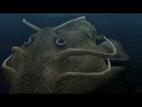 Ancient Ocean Screensaver - Epic Mode (4K)