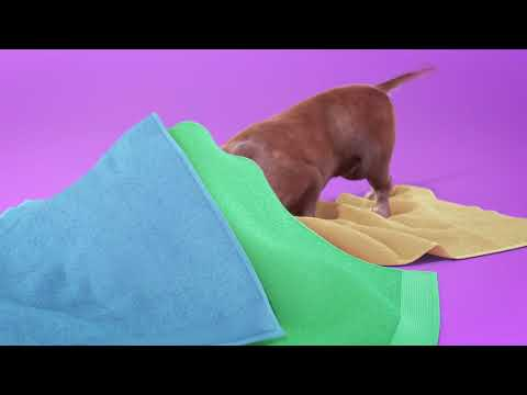 a Dogs life (animation reel) from YouTube · Duration:  53 seconds