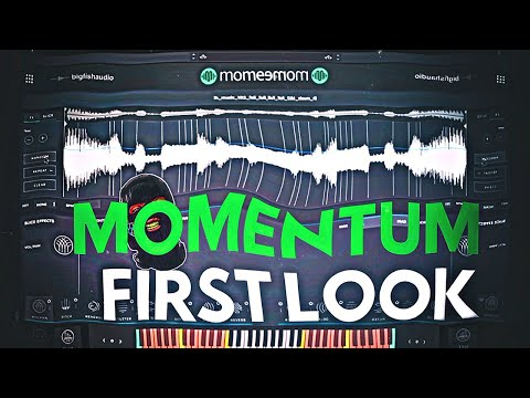 Big Fish Audio Momentum Sampler First Look And Review