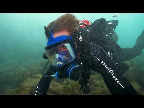 Caribbean Pirate Treasure (The REAL Treasure Island dive w/ the Cousteau's)