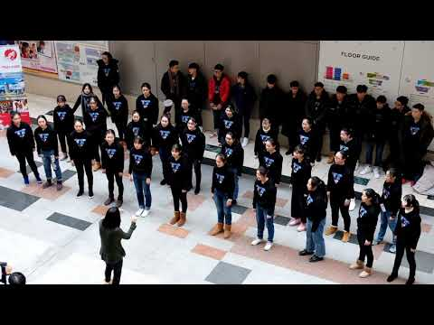 Kobe 2018 - The Skyline Choir of Shenzhen Meilin High School