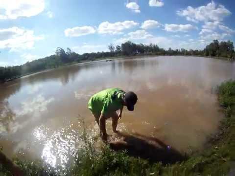 Ganso na Água!  Equipe River Lama