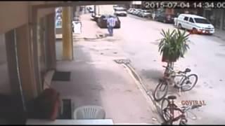 Crazy cat attacks dog / Сумасшедшая кошка нападает на собаку