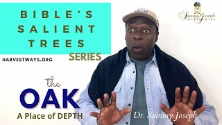 The Oak Tree Cont'd: 'The Place of Depth with God' | Dr. Sammy Joseph