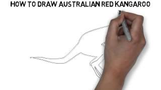 How To Draw Australian Kangaroo Quickly And Easily