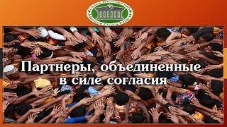 Партнеры, объединенные в силе согласия