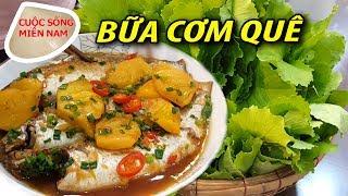 Bữa cơm chiều quê: hái rau ăn cùng món cá đối kho thơm #namviet