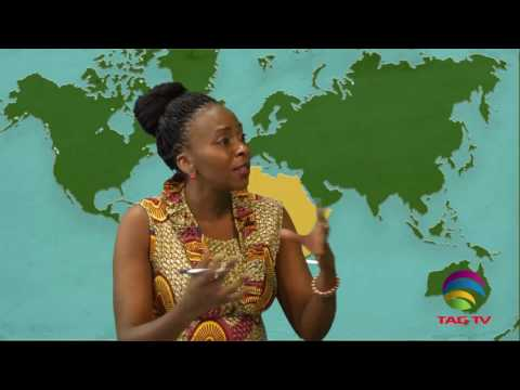 Debate on African Unity and Identity in Hot Reflections with Theresa Phiri @TAG TV