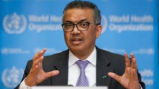 Watch again: World Health Organisation urges coronavirus testing