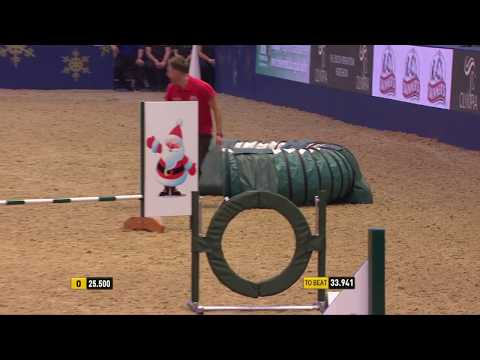 The Kennel Club Small Dog Speed Jumping Grand Prix at Olympia 2017