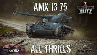 AMX 13 75 - All Thrills - Wot Blitz