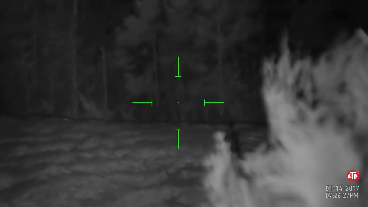 Оптический прицел и цифровая насадка PULSAR FORWARD DFA75 - YouTube