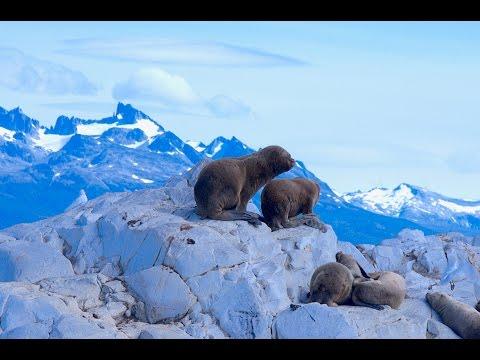 Beagle Cruise Ushuaia (Tierra del Fuego), Argentina - GoPro Hero 4 Black (2016)
