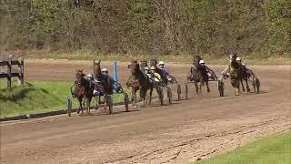 Trabrenntag BedburgHau  15092019  Rennen 4  Royal Cash (Frank Kelm)