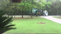Tallahassee waste management fail!