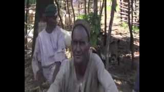 www.sudestinfo.com VIDEO/KEDOUGOU-TABASKI : La rareté du mouton flambe les prix