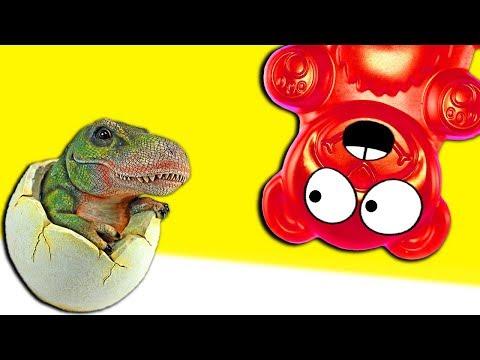 Lucky Bär züchtet Dinosaurier in Eiern - DiY