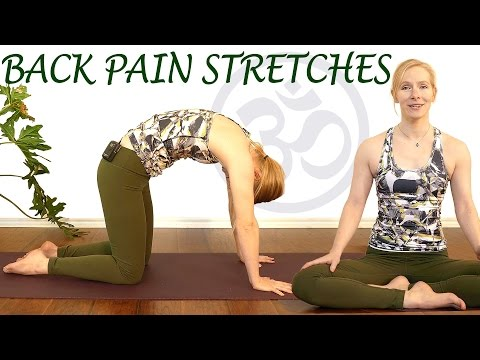 Easy Stretches for Back Pain Relief, Beginners Yoga Exercise