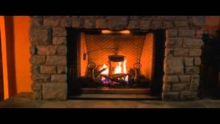 Napoleon® Dream HD Series Fireplace   eFireplaceStore com