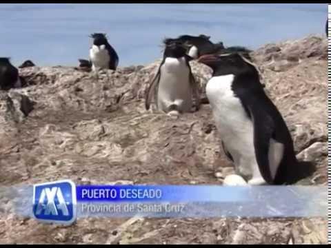 Argentina x Argentinos - Puerto Deseado - Santa Cruz