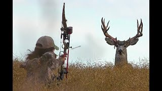 Giant Mule Deer,  Let Er Rip