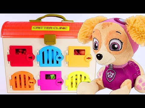 Paw Patrol Learning Colors with SKYE Critter Clinic Doctor Paw Patrol Full Episode Play Doh