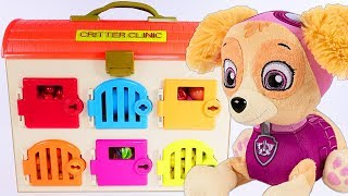 Paw Patrol Learning Colors with SKYE Critter Clinic Doctor Paw Patrol Play Doh