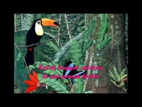 Ebiet G. Ade || Nyanyian Burung dan Pepohonan ||