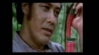 Video Film: Si Pitung Ketinggalan Golok (klip) download MP3, 3GP, MP4, WEBM, AVI, FLV Oktober 2018