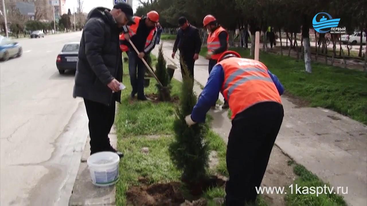 Еще один масштабный весенний субботник! Представители администрации, коммунальщики, трудовые коллективы и молодежь – объединились борьбе за чистоту родного Каспийска