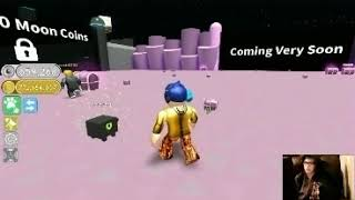 roblox pet simulator