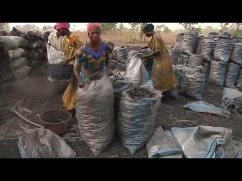 CHARCOAL EXPORT IN NIGERIA TOP SECRETS