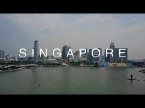 Walking With Singapore: Road to 2011