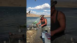 Tunceli Pertek Balıkçı