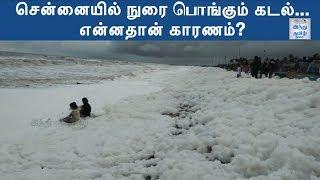 chennai-s-marina-beach-toxic-foam