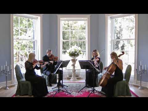 All the Small Things Blink 182 Wedding String Quartet